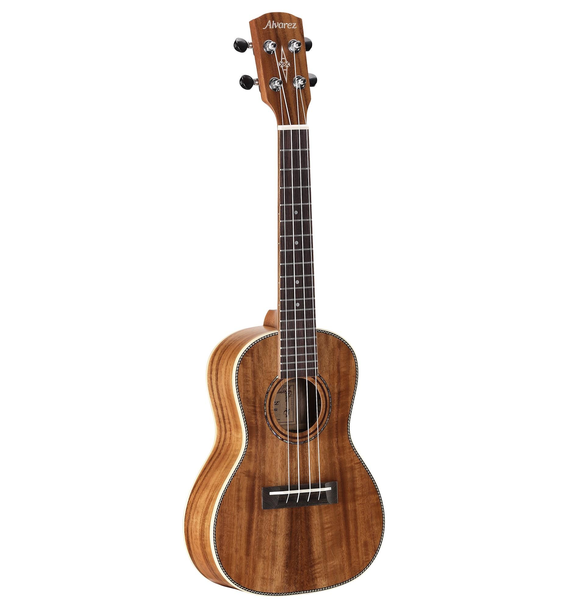 Alvarez guitars AU90C
